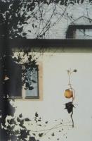 Installation im Karmeliterkloster, Frankfurt